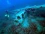 Isola d'Elba 22-24 Giugno 2013